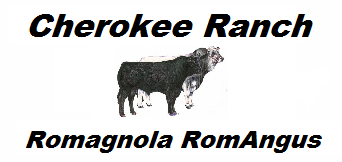 Cherokee Ranch Romagnola RomAngus Logo